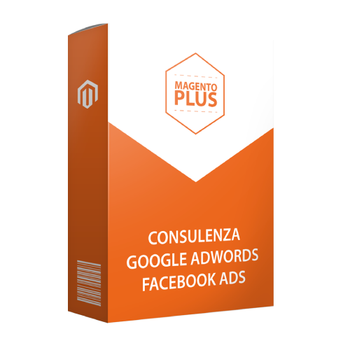 Consulenza Google Adwords / Facebook Ads